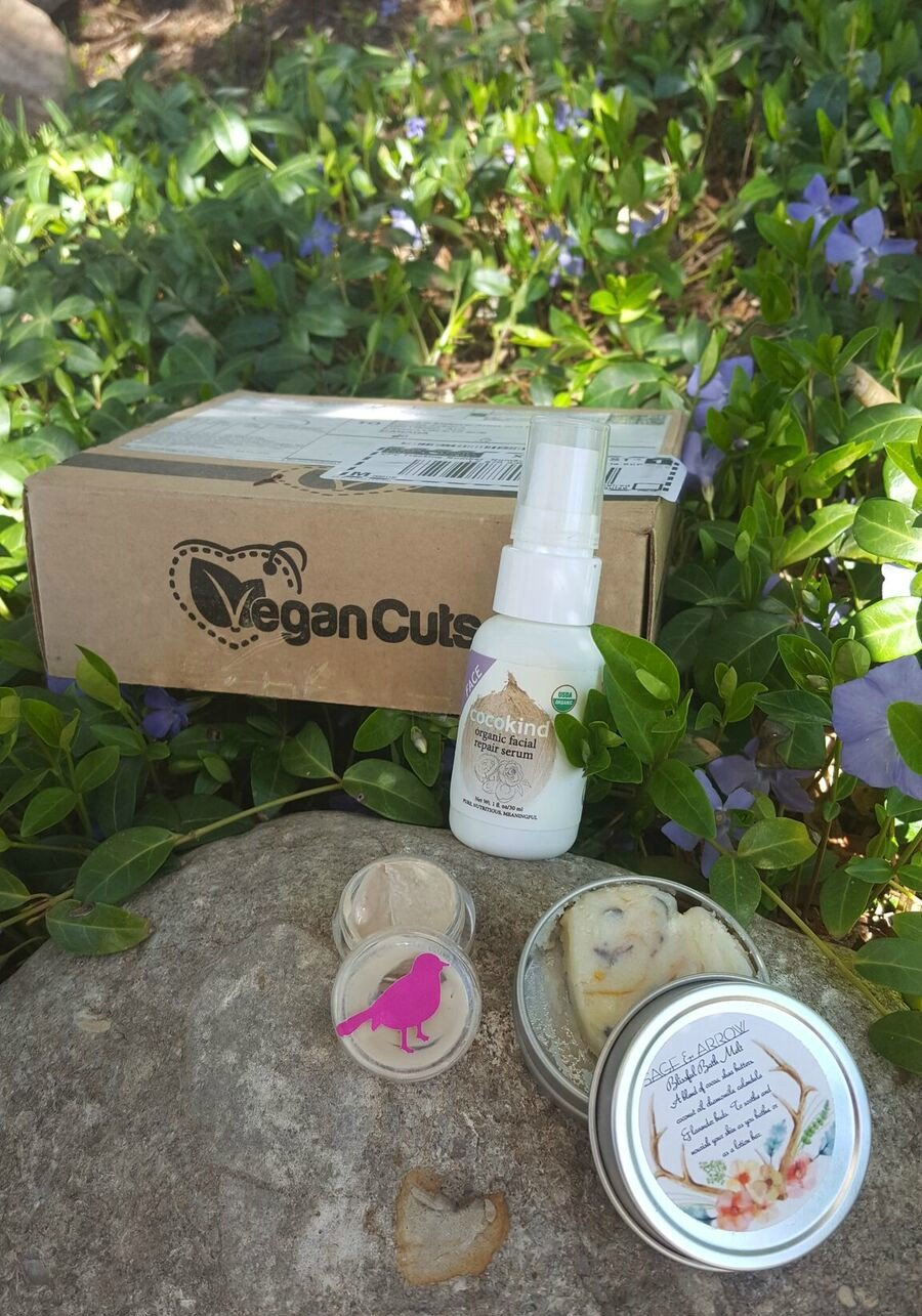 Ottawa makeup artist Klava Z reviews natural vegan skincare products from a subscription box Vegan Cuts